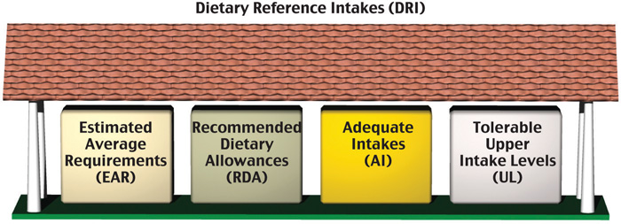 Understanding Daily Reference Intakes