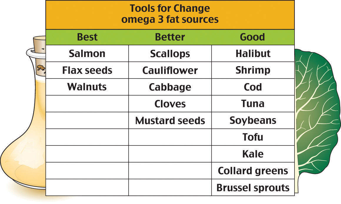 Building Blocks Of Fats And Oils