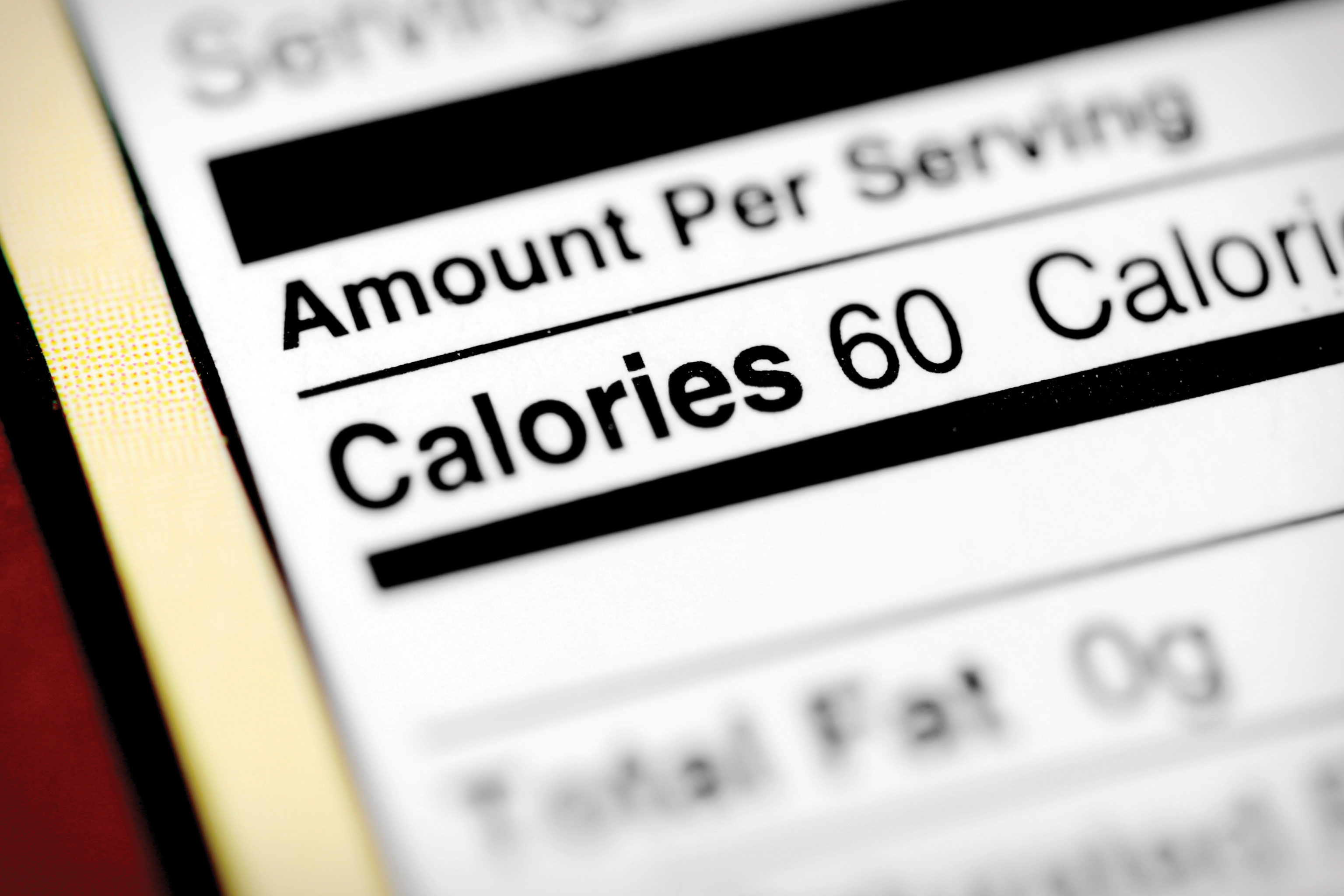 what is the relationship between a calorie and kilocalorie