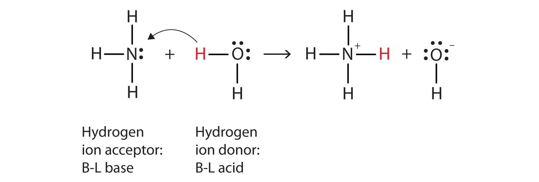 Ammonia Attack Organic Chemistry Open Ring