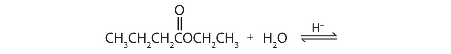 Reversible equation for the esterification and hydrolysis of glyceryl ethanoate