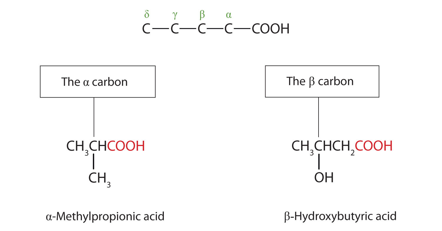 Carboxylic Acids Structures And Names