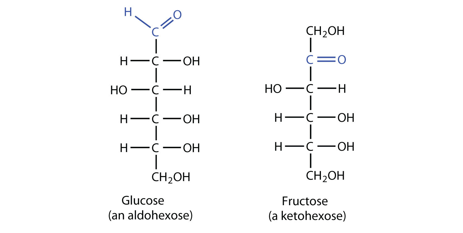 D Fructose Structure Glucose and fruc
