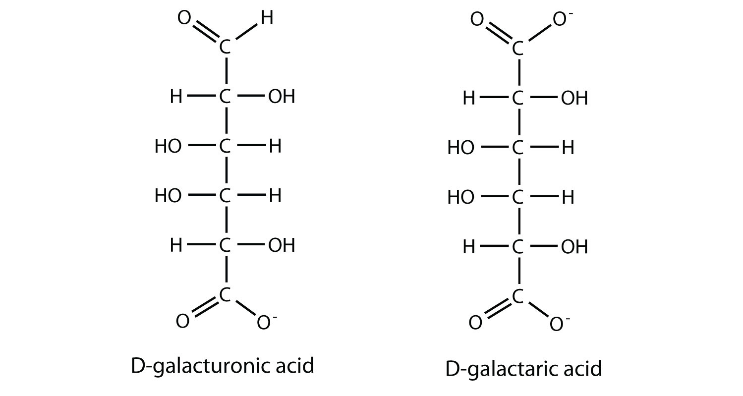 Properties of Monosaccharides