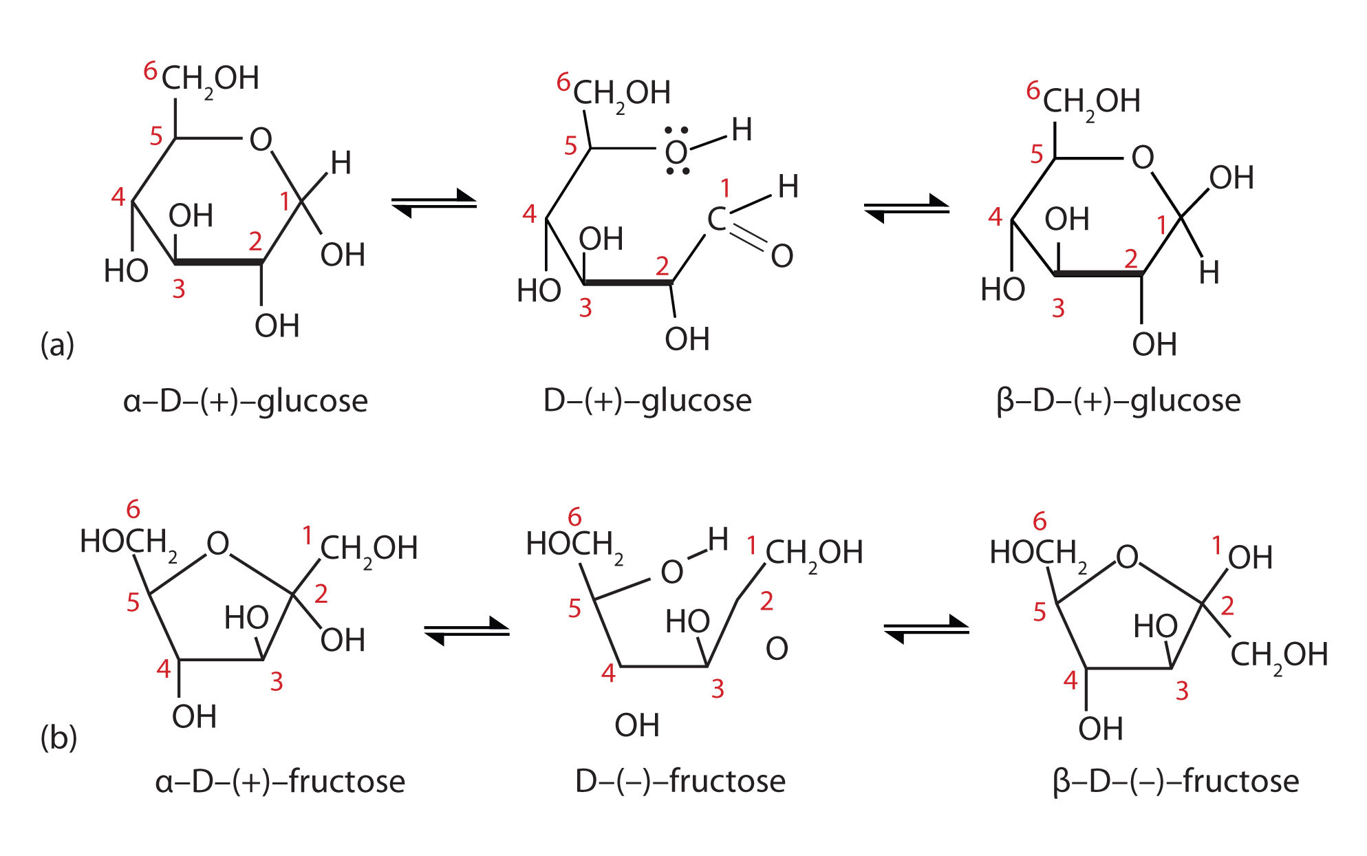 Pics For > Fructose Ring Structure
