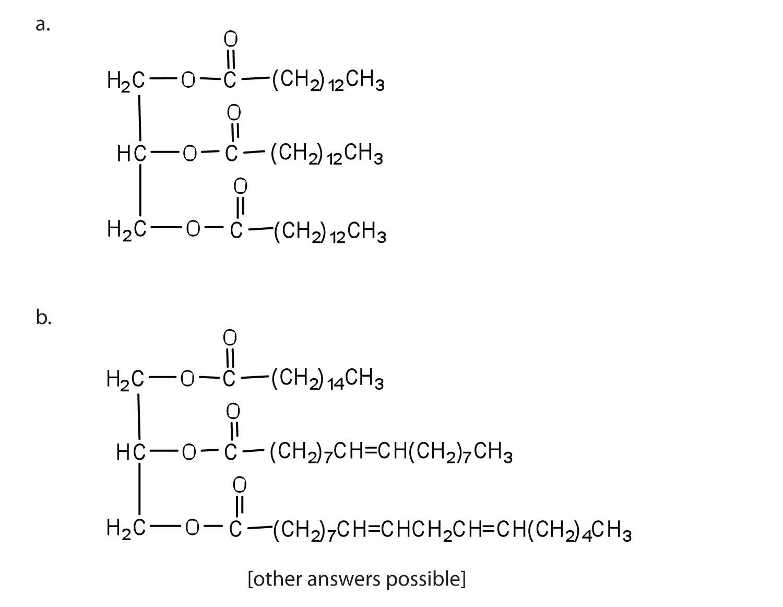 Lipids Organic Acid Structural Formula