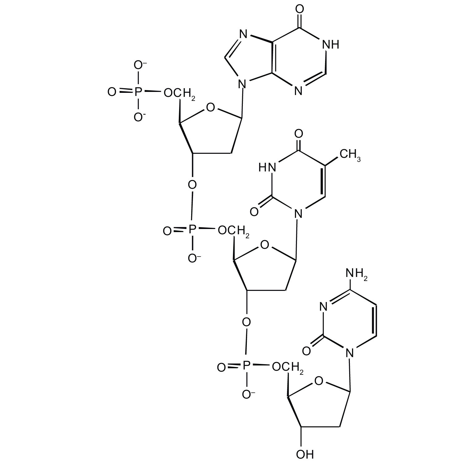 Nucleic Acid Structure Dna Nucleic Acid Structure