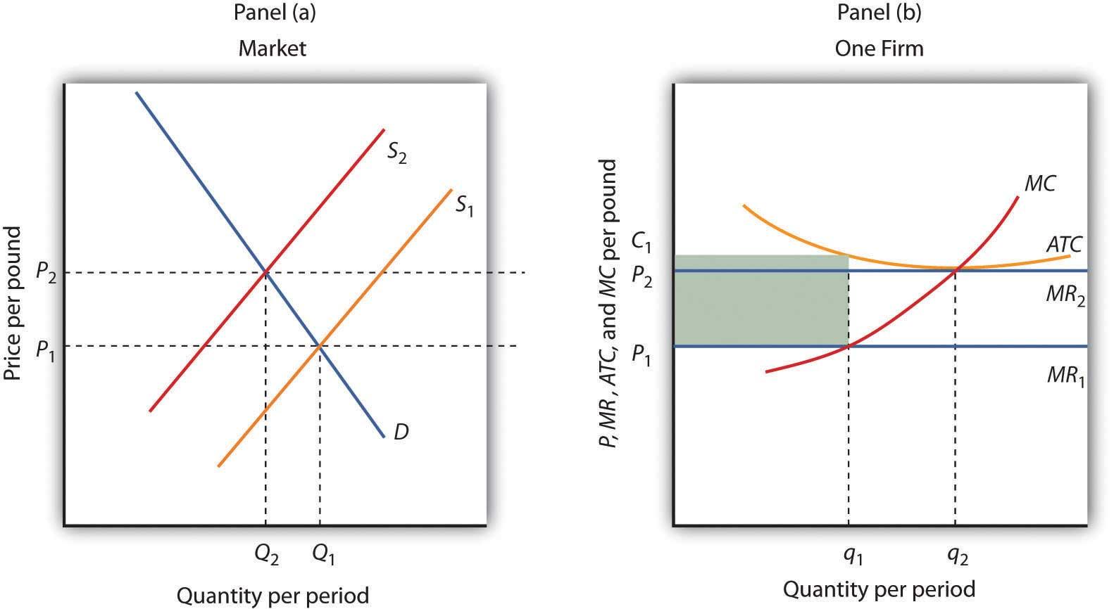 perfect market in economics