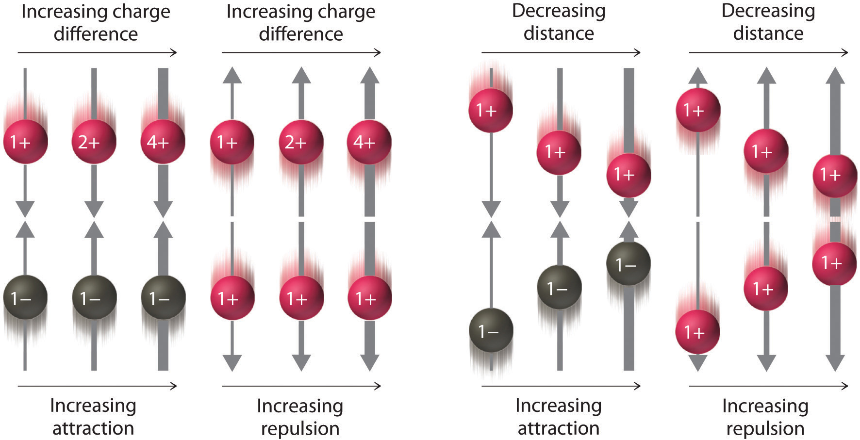 inorganic ions include those of sodium Basic renal processes for sodium and water  ter and inorganic ions to keep  the amounts of these  renal circulation is very unusual in that it includes two.