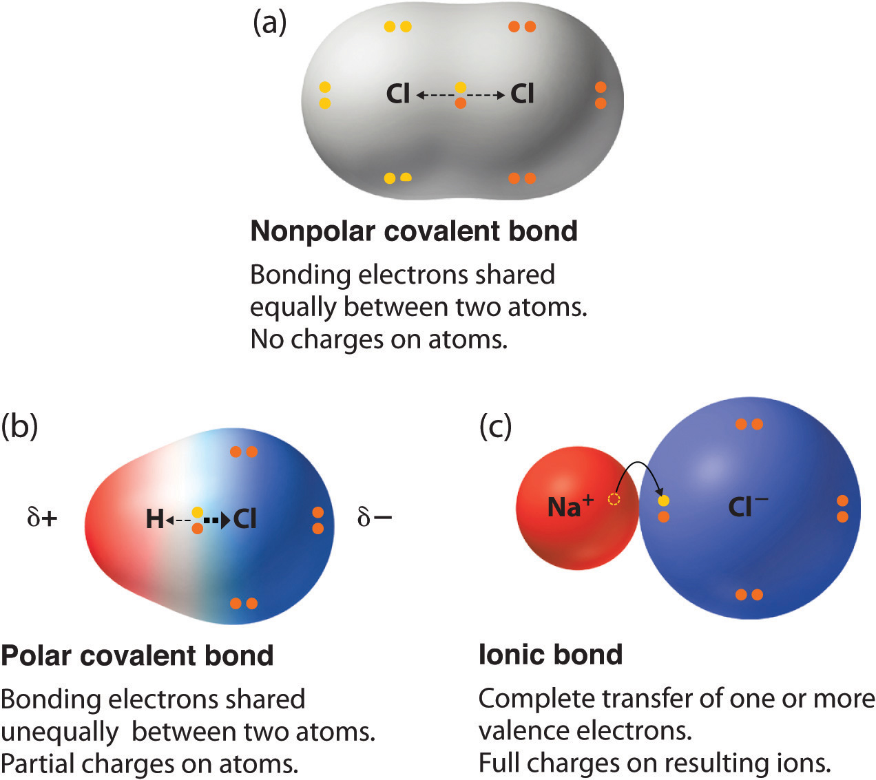 polar covalent bonds gold dot diagram chemistry