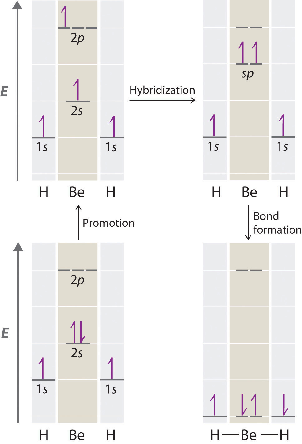 Localized Bonding And Hybrid Atomic Orbitals