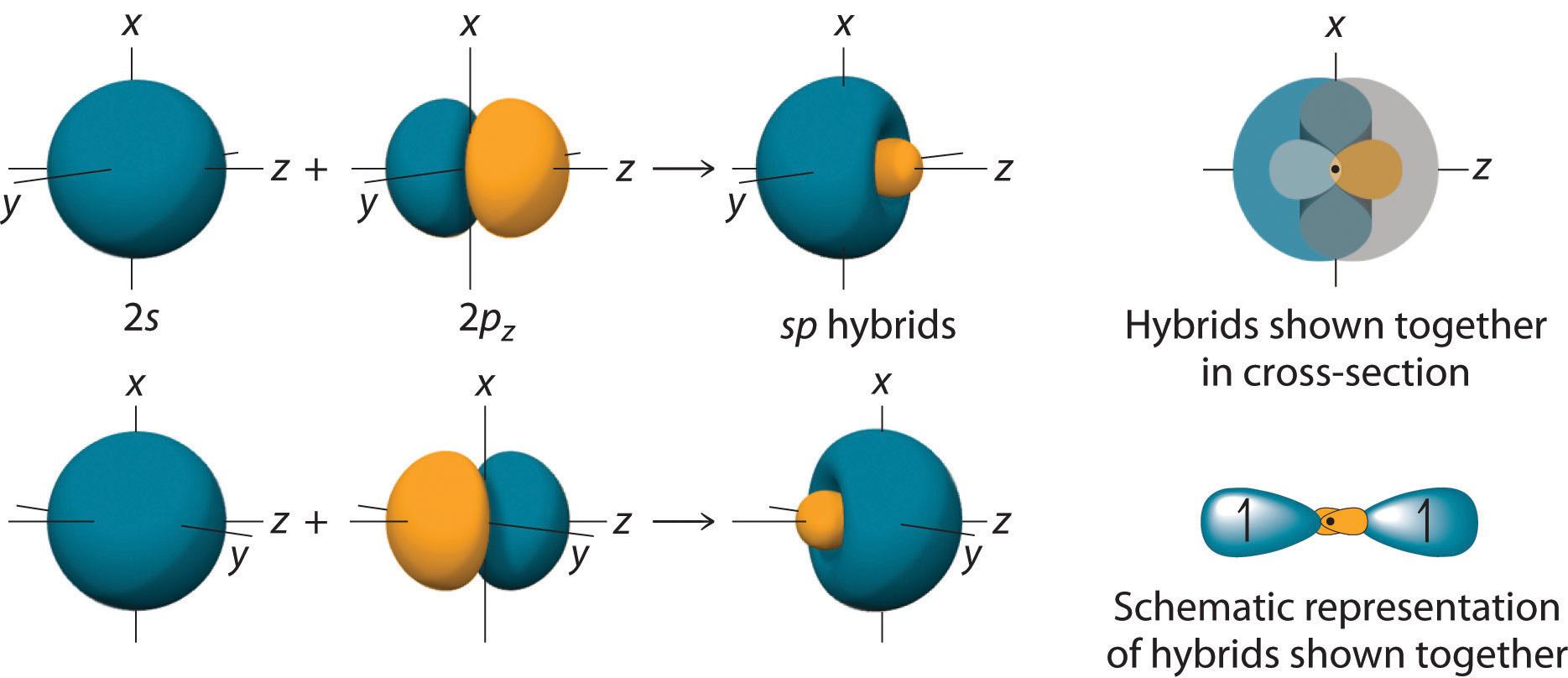 Molecular Geometry And Covalent Bonding Models Diagram Of An Oxygen Atom Photo Album Diagrams