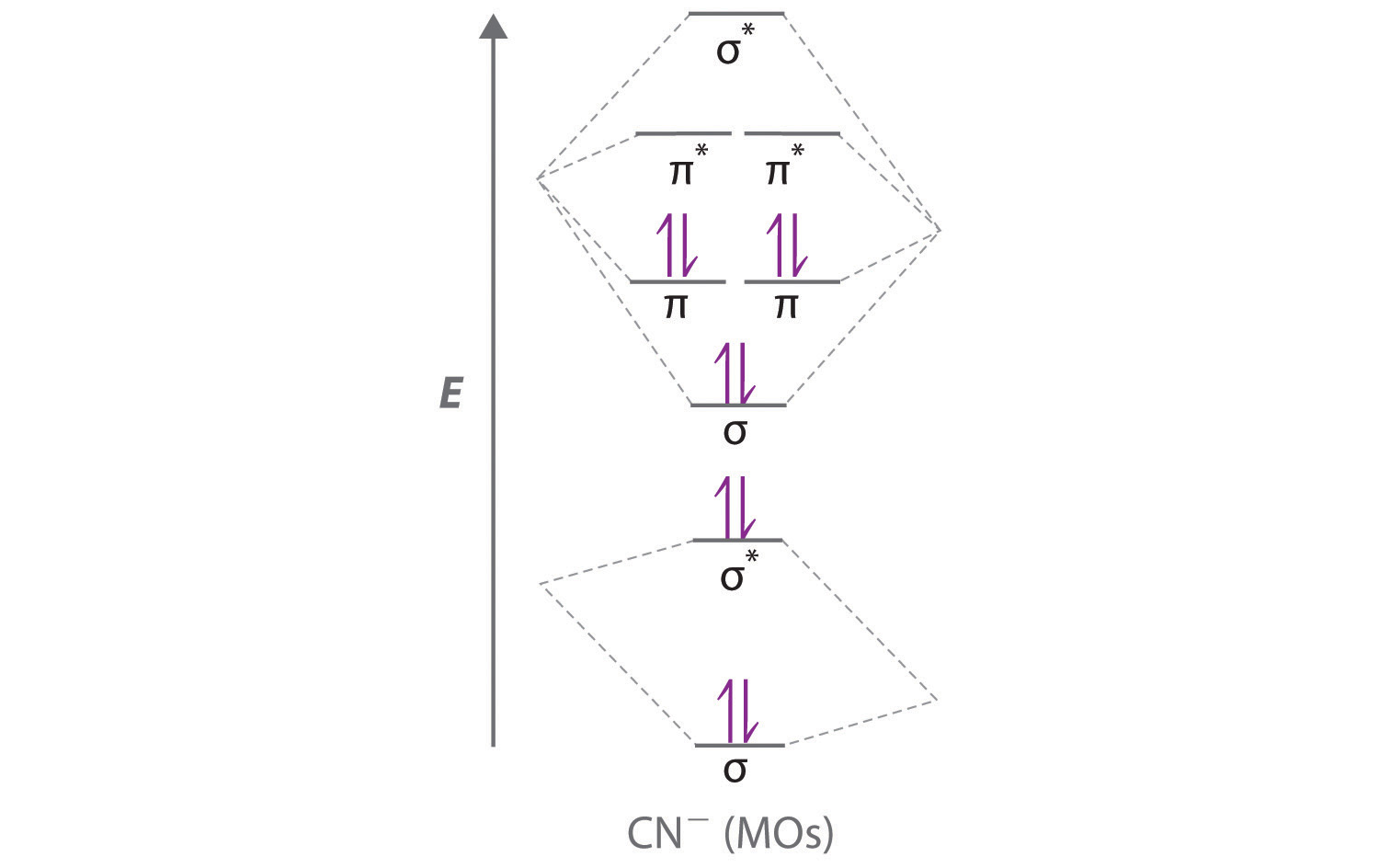 Delocalized Bonding and Molecular Orbitals B2 Lewis Structure