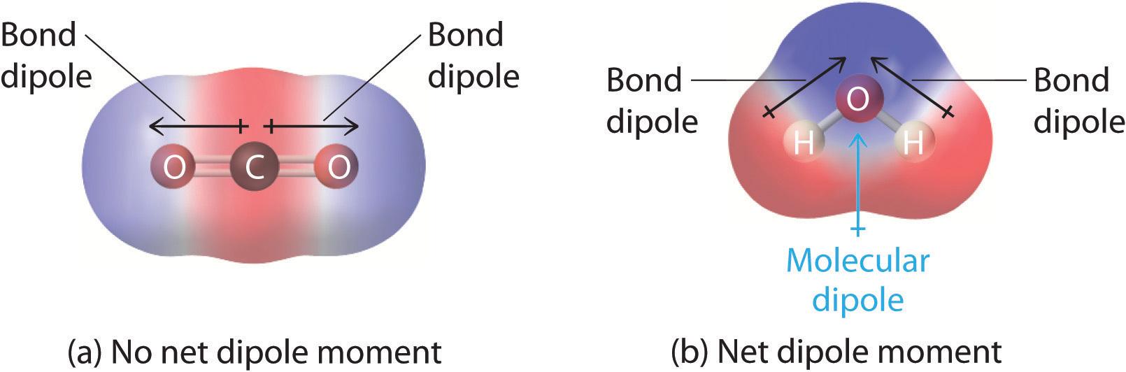 Predicting the Geometr... Nonpolar Covalent Bond Examples