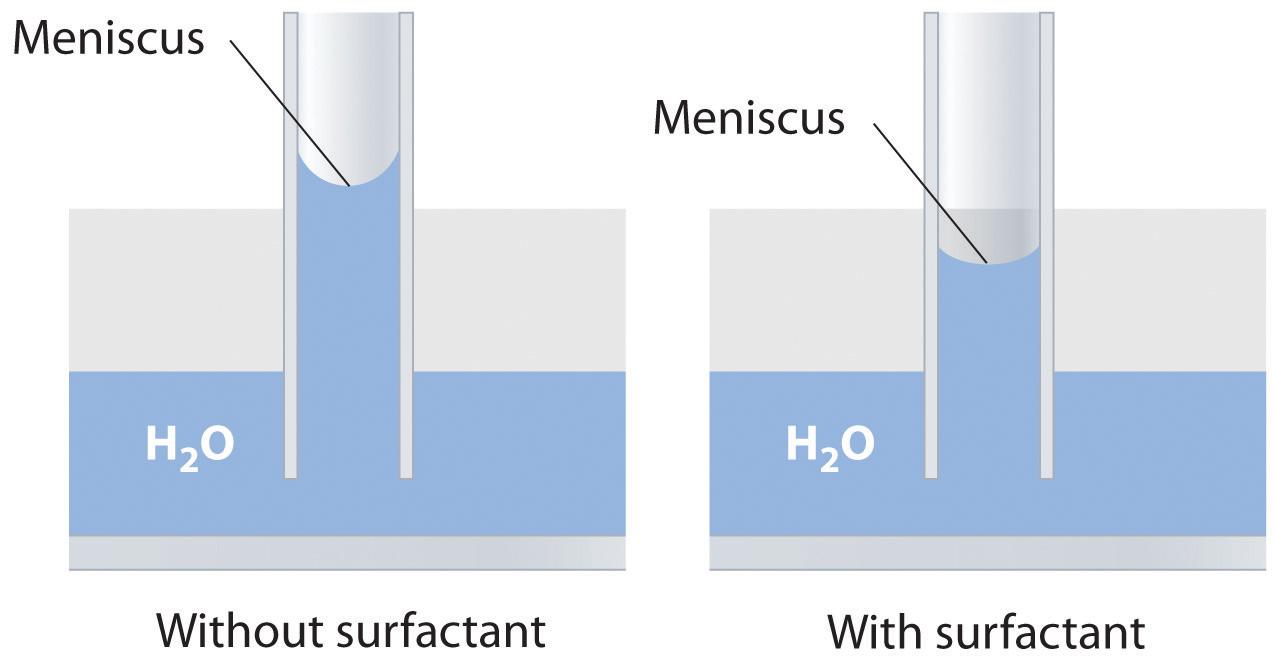 Unique Properties of Liquids