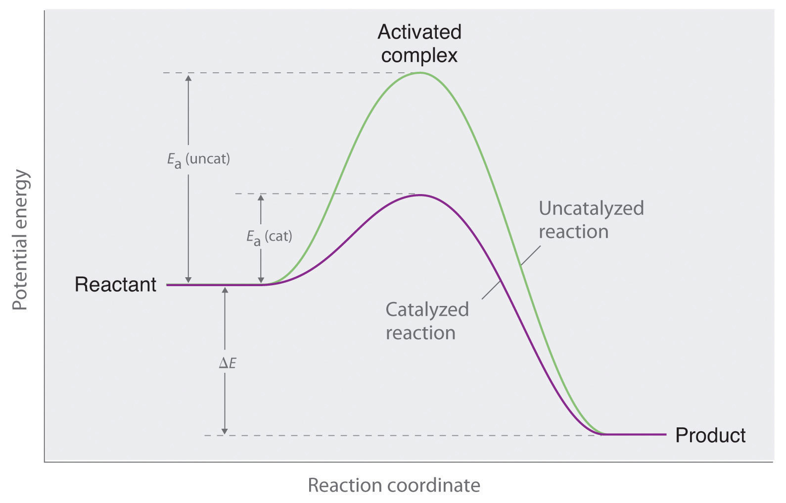 an overview of the experiment the concentration of reactant or product in chemical reaction These include the reactant concentration, the activation energy, the number of effective collisions between  the presence of a catalyst, and the reaction mechanism 111 meaning of reaction rate consider the following chemical reaction: n2o5(g) 2  so how exactly is the order of a reactant determined by experiment the initial rate of the.