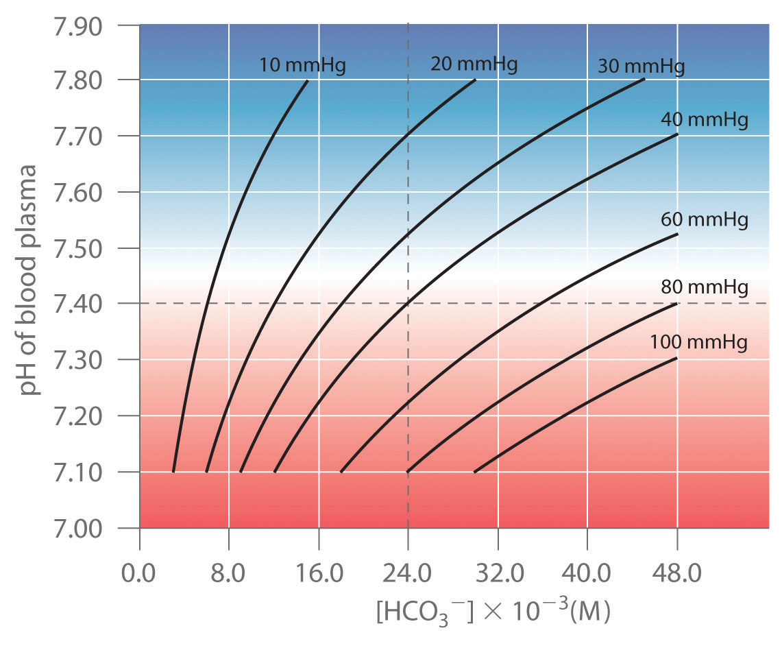 Only Thosebinations Of Ph And [hco 3 ˆ�] That Lie On A Given Line Are  Allowed For The Particular Value Of Pco2 Indicated Normal Values Of Blood  Plasma