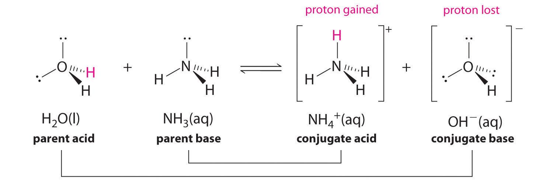 Relative reactivity of anilines