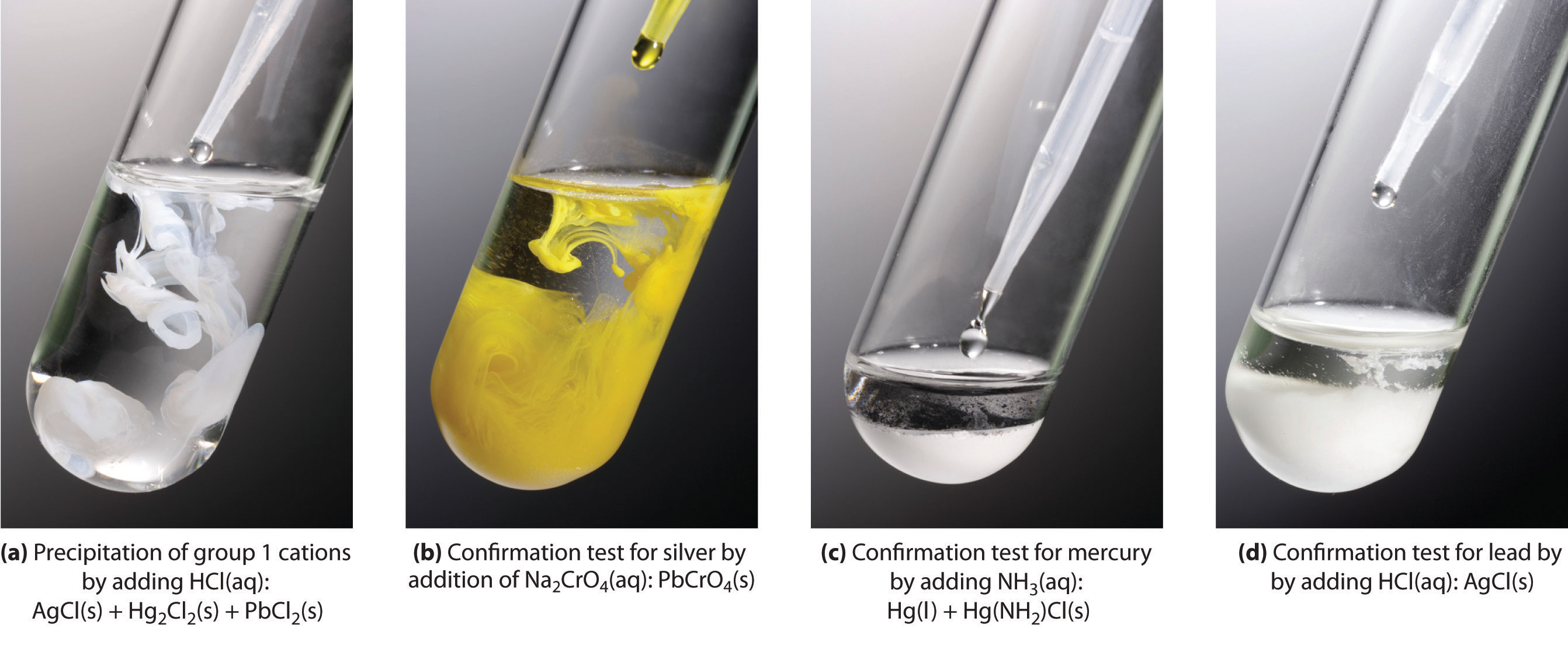 ammonium sulphate precipitation table pdf