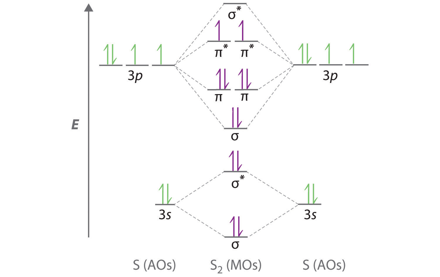 molecular geometry and covalent bonding models