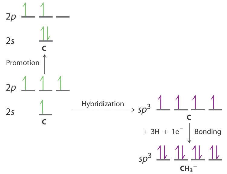 Localized Bonding and Hybrid Atomic Orbitals