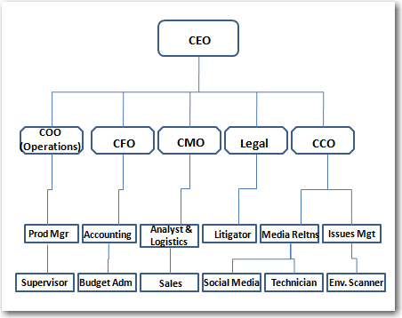 advertising agency structure and function pdf