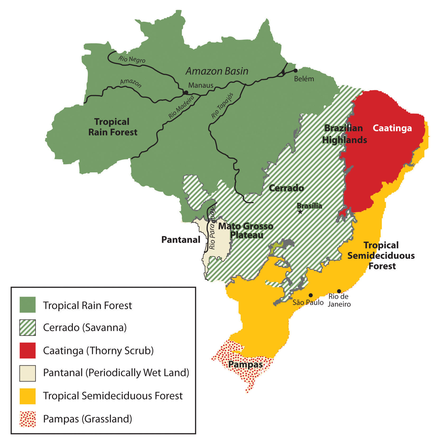 Figure 6.29 Natural Vegetation of Brazil