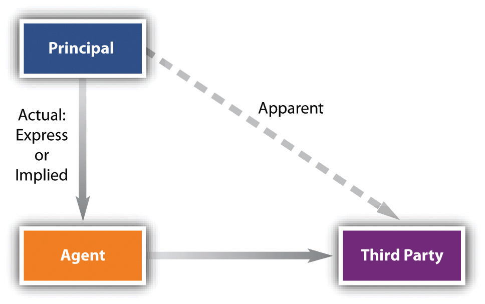 Image showing the types of authority in a principal-agent relationship. The authority of the principal over the agent is actual and either express or implied, while the principal's relationship over the third party is apparent.