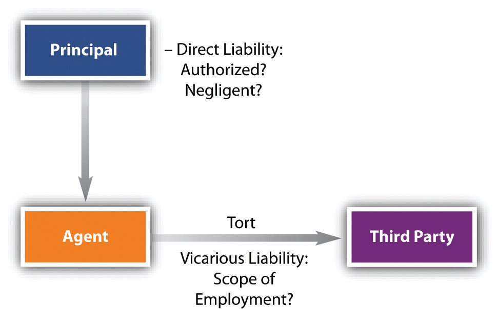 Image showing the principal having direct liability over the agent, either authorized or negligent. Also shows the agent with vicarious liability over the third party.